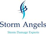 Storm Assist