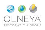 Olneya Restoration Group